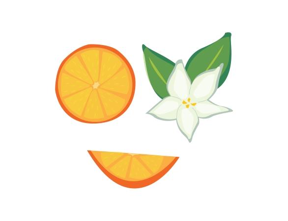 _oranges-01